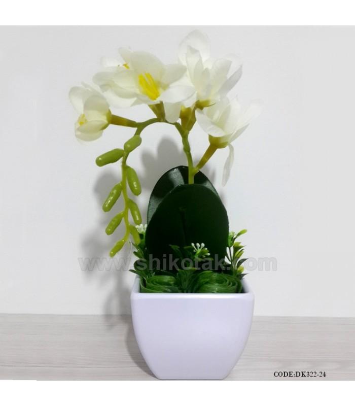 گلدان ارکیده سفید کوچک