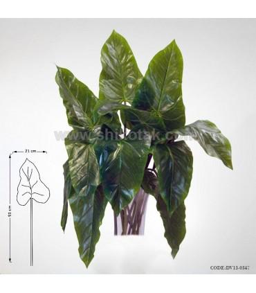 گیاه فیل گوش مصنوعی