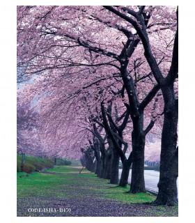 عکس پوستر پارچه ای منظره طرح شکوفه